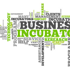 The Problems with Business Incubators, and How to Solve Them